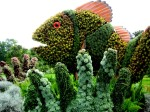 Clownfish by Okinawa National Park - elaborate mosaiculture design at Montreal 2013 event Mosaicultures Internationales