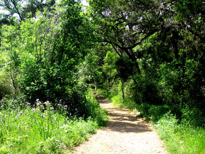 Mayfield Park - hiking trails in 27 acre nature preserve in Central Austin