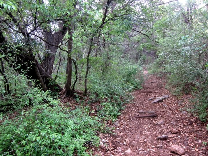 Trail along St Edwards Park in NW Austin TX