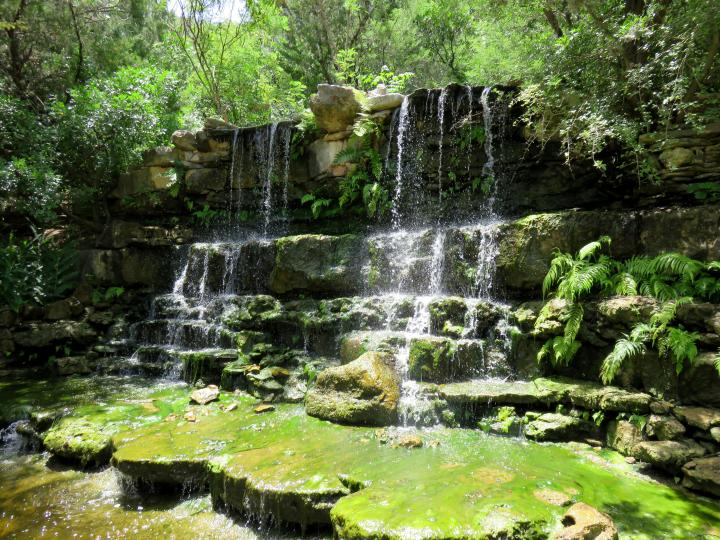 Waterfall - near the location of dinosaur tracks prehistoric garden in Zilker Botanical Garden in central Austin TX