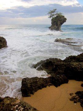 Costa Rica Caribbean Coast - Manzanillo shoreline along Caribbean Sea - tropical paradise pura vida