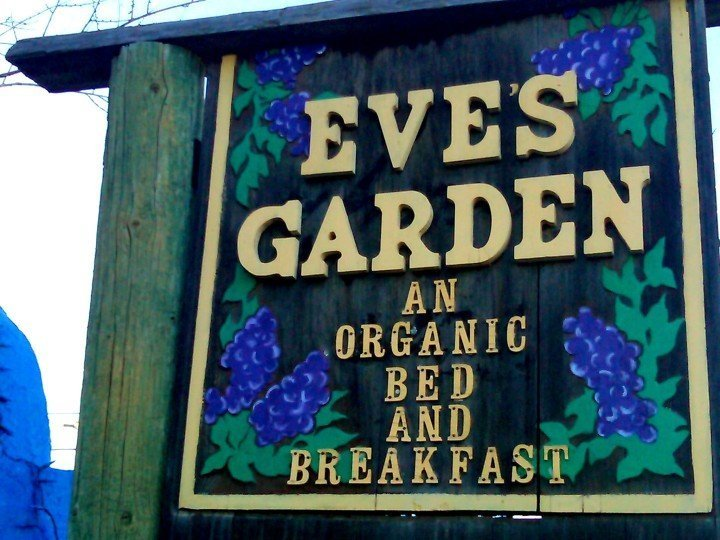 Eve's Garden Organic Bed and Breakfast in Marathon Texas - best place to stay near Big Bend National Park in Southwestern Texas