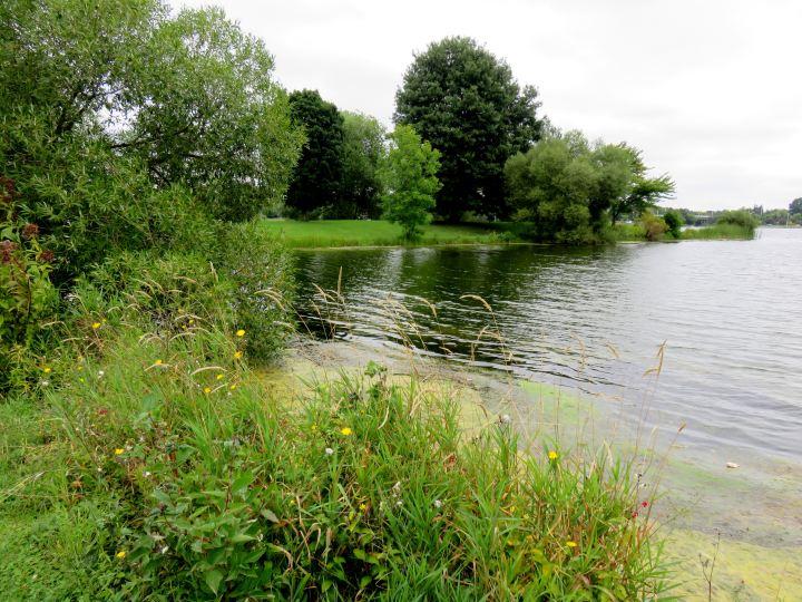 Kayaking canoeing and boating are popular on Dows Lake in Ottawa Ontario
