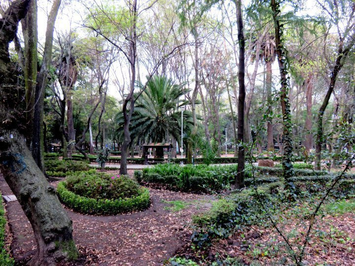 La Condesa Mexico City - relax in Parque Mexico and enjoy walking the neighborhood