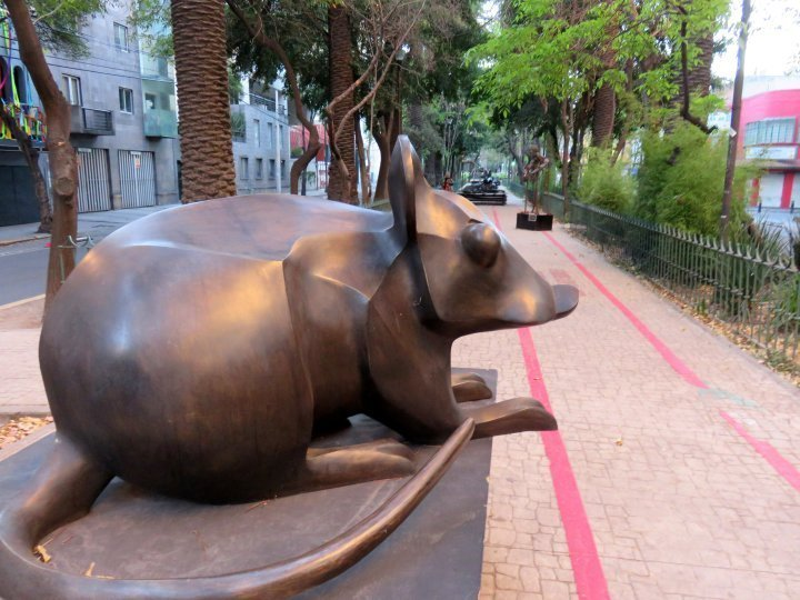 La Condesa Mexico City - rat sculpture by Jose Sacal - Amsterdam Avenue oval shaped street with pedestrian walkway in the center