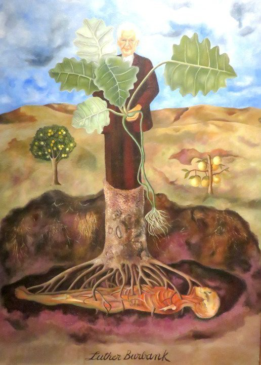 1931 painting by Frida Kahlo titled Portrait of Luther Burbank - at Museo de Bellas Artes in Mexico City