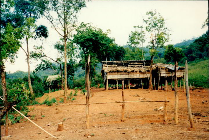 Hill tribe trekking in Pai Thailand - houses on stilts with animals roaming beneath