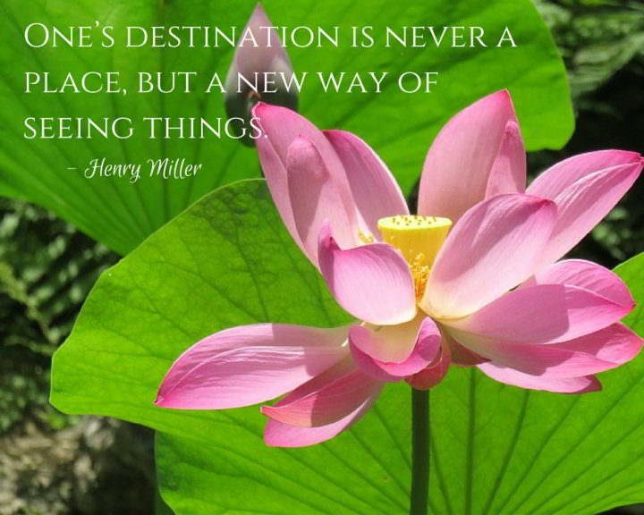 Pink lotus flower with inspirational travel quote by Henry Miller: One's destination is never a place but a new way of seeing things