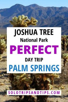 Joshua Tree National Park Perfect day tri