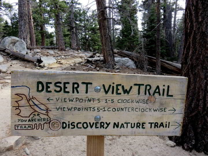 Signage for Desert View Trail and Discovery Nature Trail with map at Mt San Jacinto State Park - Jeffrey Pink trees in the background