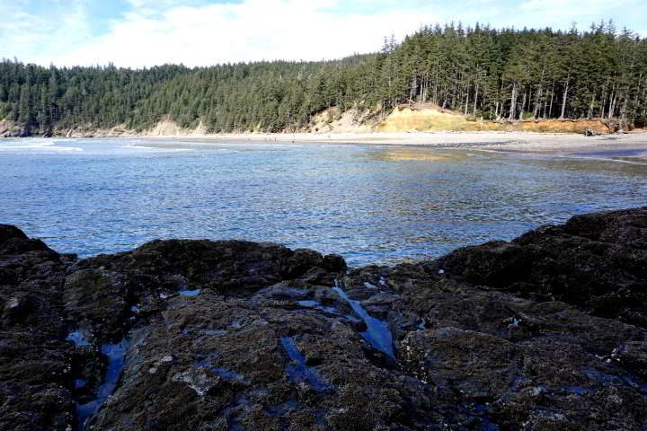 Tide pools in foreground of Short Sand Beach at Oswald West State Park in Oregon