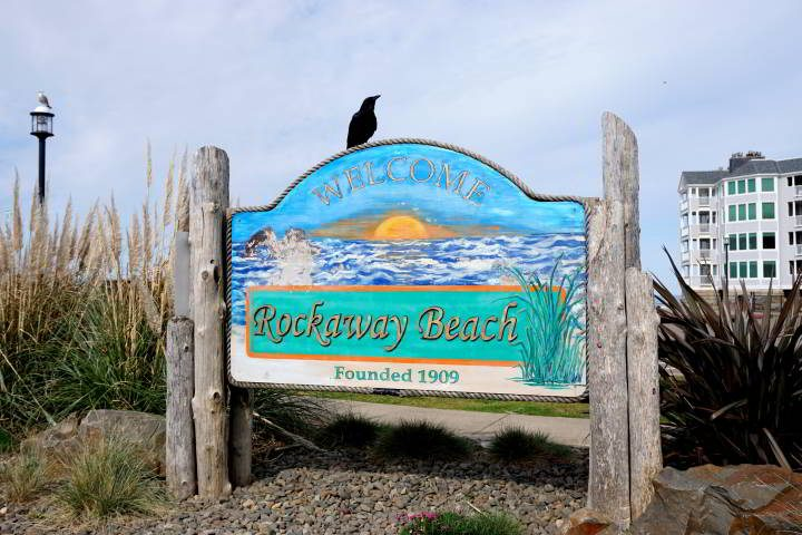 Crow sits atop the Welcome to Rockaway Beach - Founded 1909 sign