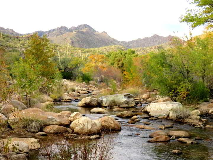 Mountains and water - hiking in Tucson AZ Sabino Canyon