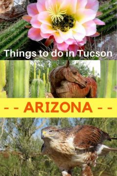 Things to do in Tucson Arizona - travel guide and trip planning