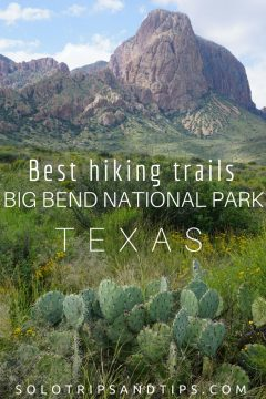 Best hiking trails Big Bend National Park in Texas - cactus and mountains solotripsandtips.com #bigbend #texas #hiking #besthikes