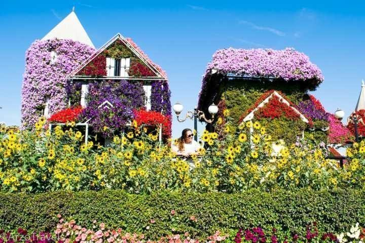 Dubai solo female travel - visit Miracle Garden, the world's largest flower garden in Dubailand UAE