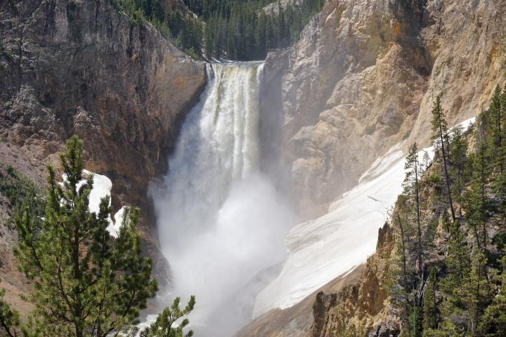 Visit Yellowstone National Park - 5 Big Reasons You Must Go! •