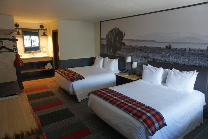 Mountain Modern Motel review - beds with bison photo in background