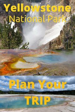 Yellowstone National Park plan your trip to one of the most visited places in the USA. The first national park and over half of the world's thermal features are located at Yellowstone. #yellowstone #vacation