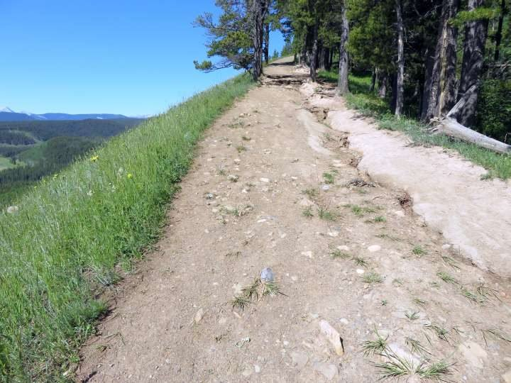 Uphill portion of Fullerton Loop trail near Bragg Creek