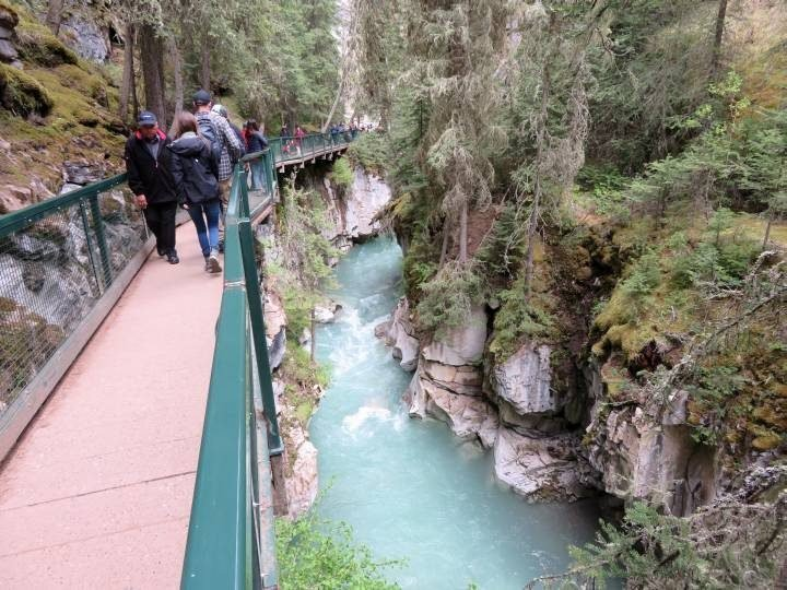 People hike on elevated walkway at Johnston Canyon Banff