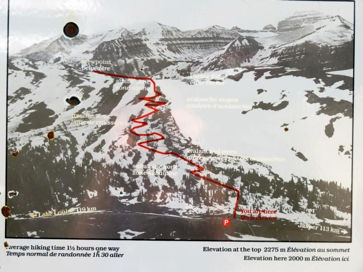 Parker Ridge Trail map shows switchbacks up to overlook area in Banff National Park Alberta