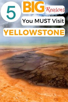 5 Big reasons you must visit Yellowstone #grandprismaticspring #yellowstone