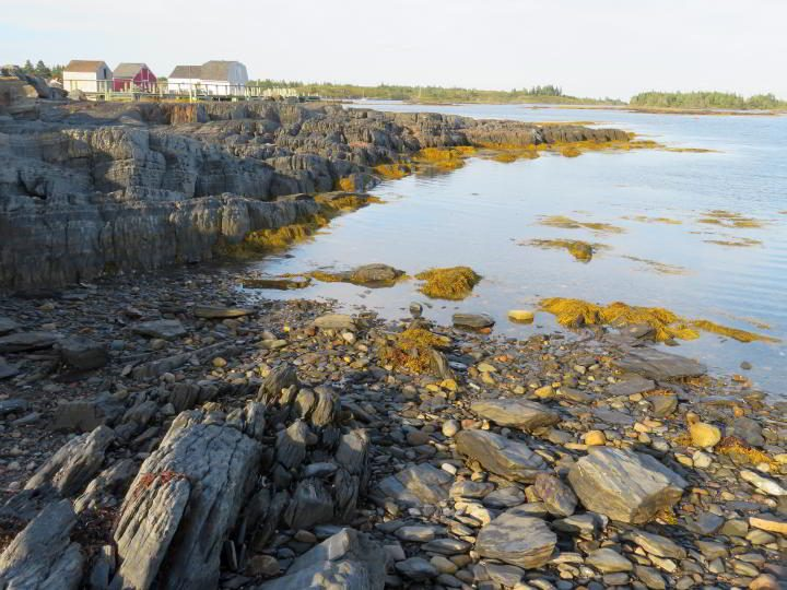 Blue Rocks Nova Scotia at low tide