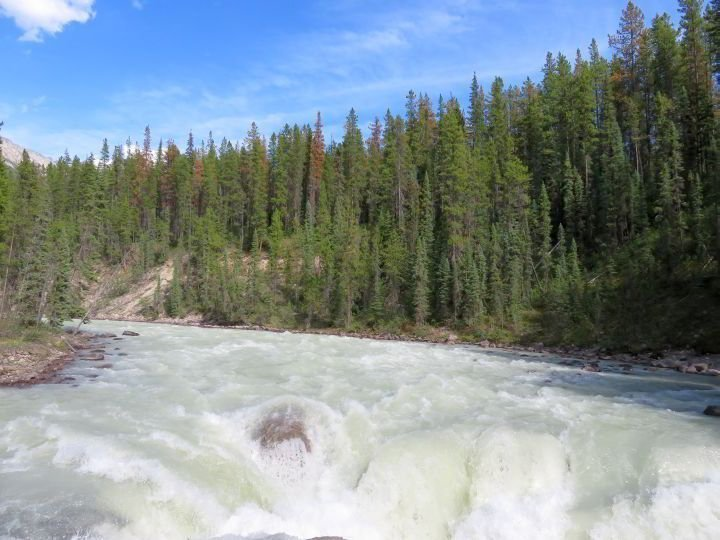 Beautiful Sunwapta Falls is a great photo stop on the Icefields Parkway from Banff to Jasper road trip