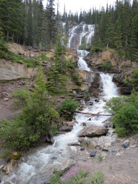Tangle Falls on the Icefields Parkway Hwy 93 on your way to Jasper