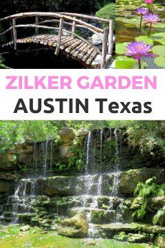 Waterfall, fairytale bridge, lotus flowers at the botanical garden in Zilker Botanical Garden in central Austin Texas USA