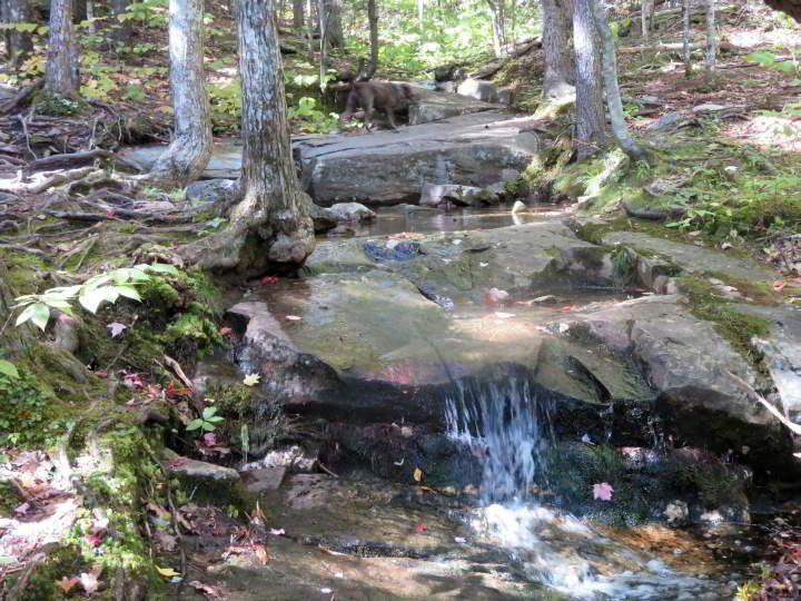 Creek at Megunticook trail in Camden Maine