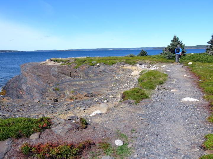 Much of Gaff Point trail offers beautiful ocean views