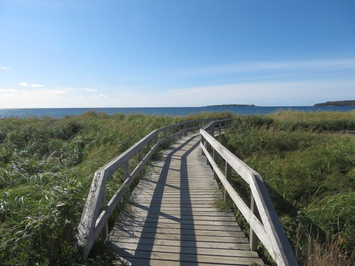 Gaff Point trailhead is the boardwalk at Hirtle's Beach