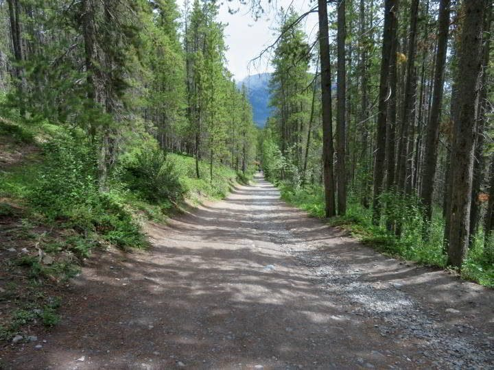 Upper Grassi Lakes Trail - the 'easy' trail is a gravel road