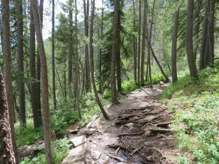 Grassi Lakes Trail in Kananaskis