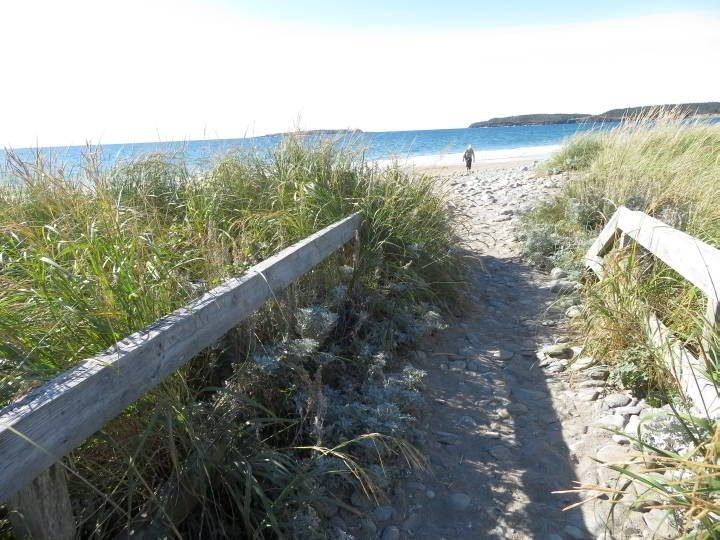 Hirtle's Beach Gaff Point trailhead