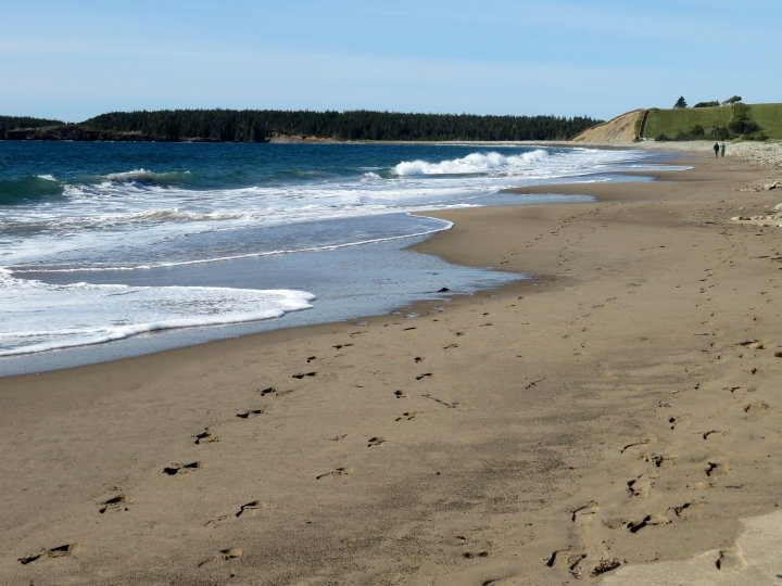 Hirtle's Beach Gaff Point hiking trail begins right at the beach