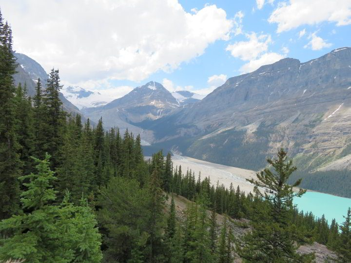 Bow Summit Peyto Lake trail provides views of the lake and Peyto Glacier