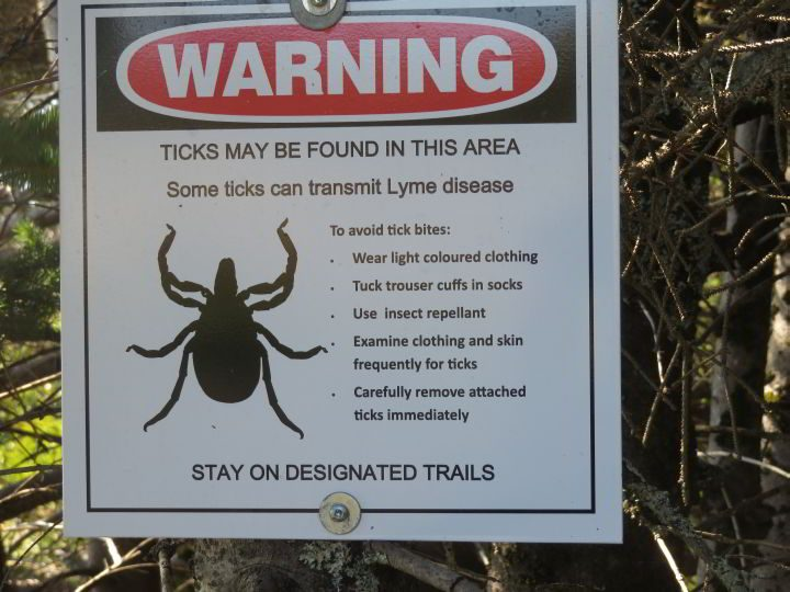 Ticks and Lyme disease - use insect repellent
