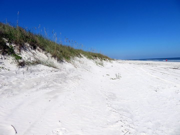 Sand dunes along Crescent Beach in St Augustine FL