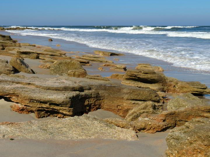 Coquina rock along Marineland Beach - River to Sea Preserve Florida
