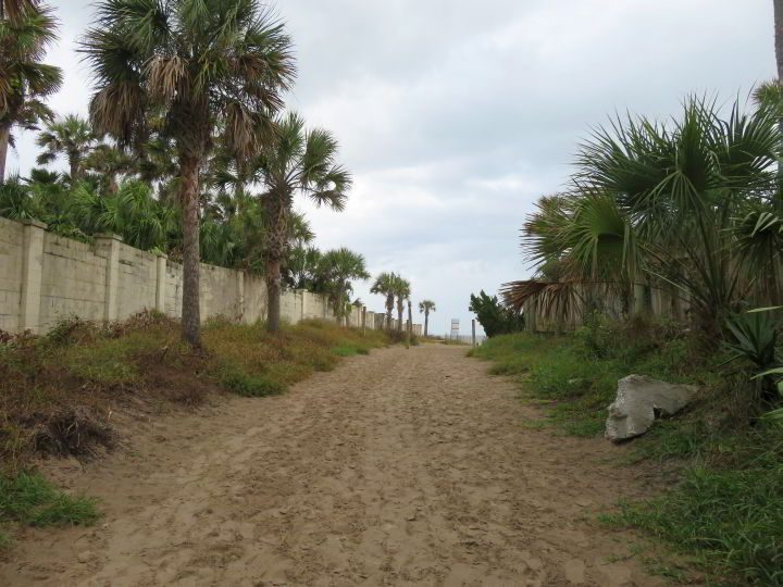 Palm tree lined sand walkway to Mickler Beach Florida