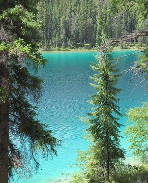 Aquamarine to turquoise color of the glacial waters at Valley of the Five Lakes hiking trail in Jasper Alberta
