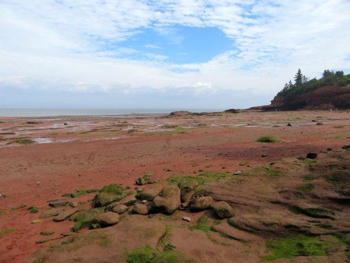 Low tide exposes the ocean floor landscape and creates tide pools at Bay of Fundy