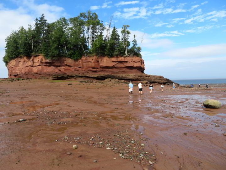 Exploring the ocean floor near the flowerpot at Burntcoat Head Park on Bay of Fundy Nova Scotia