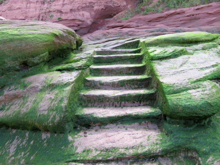 Stairway to the ocean floor at Burntcoat Head Park