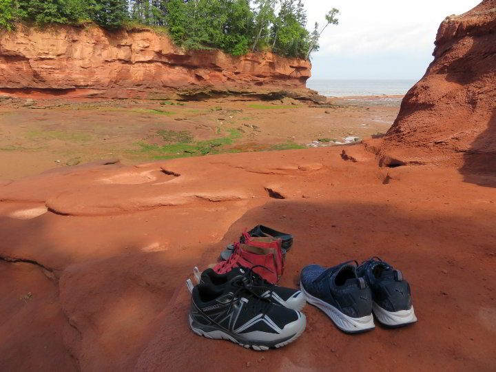 Some visitors opt to remove their shoes and walk barefoot on the ocean floor at Burntcoat Head Park