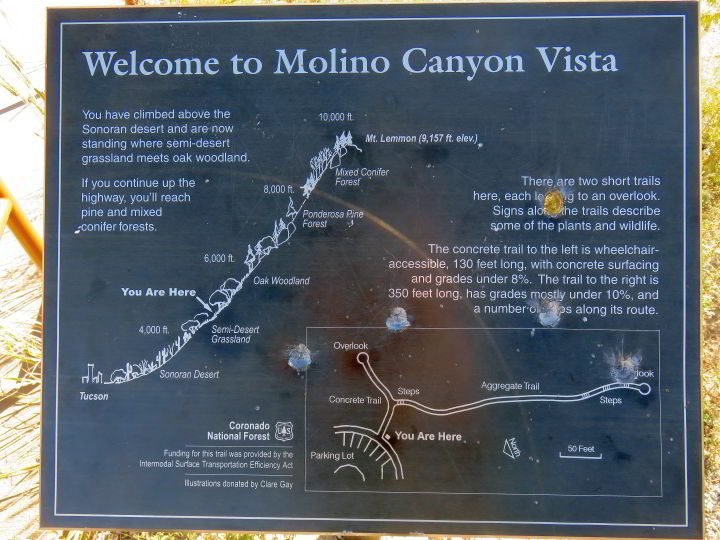 Molino Canyon Vista is a recommended stop at Mt Lemmon