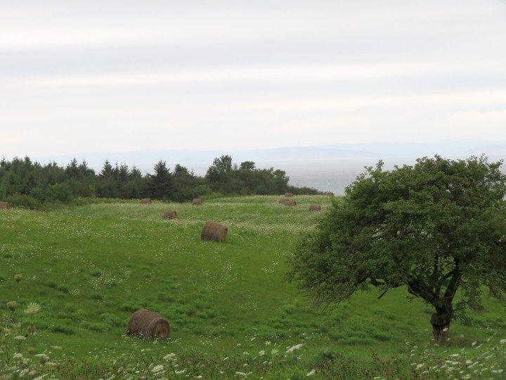 Farmland in Hants County Nova Scotia